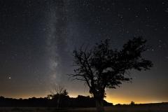 Paysages et ciel nocturnes